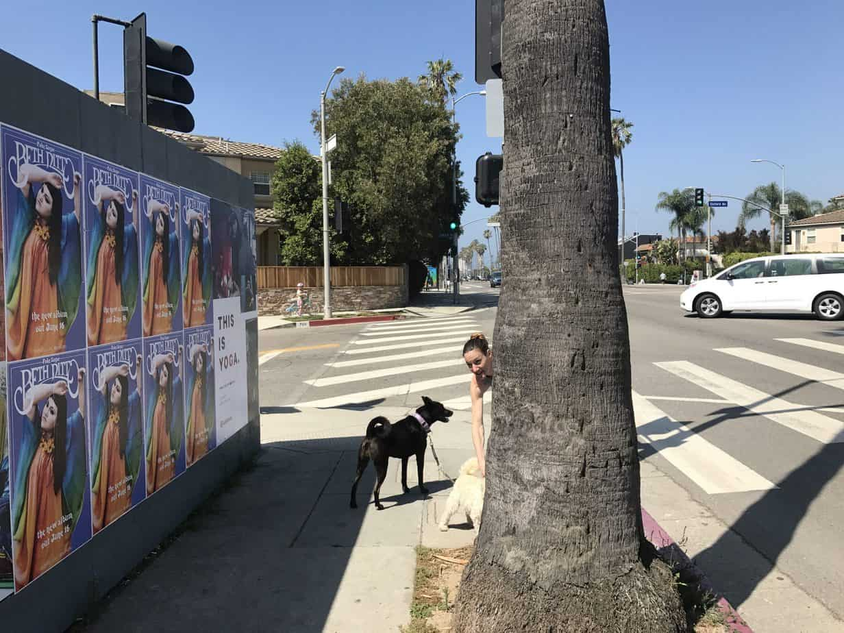 Wildposting Los Angeles